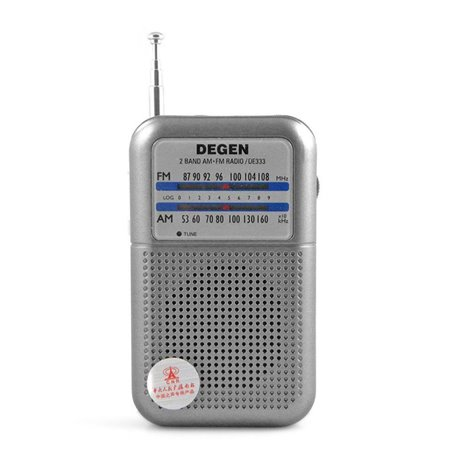 DE333 DEGEN RADIO ANALOGICA AM/FM